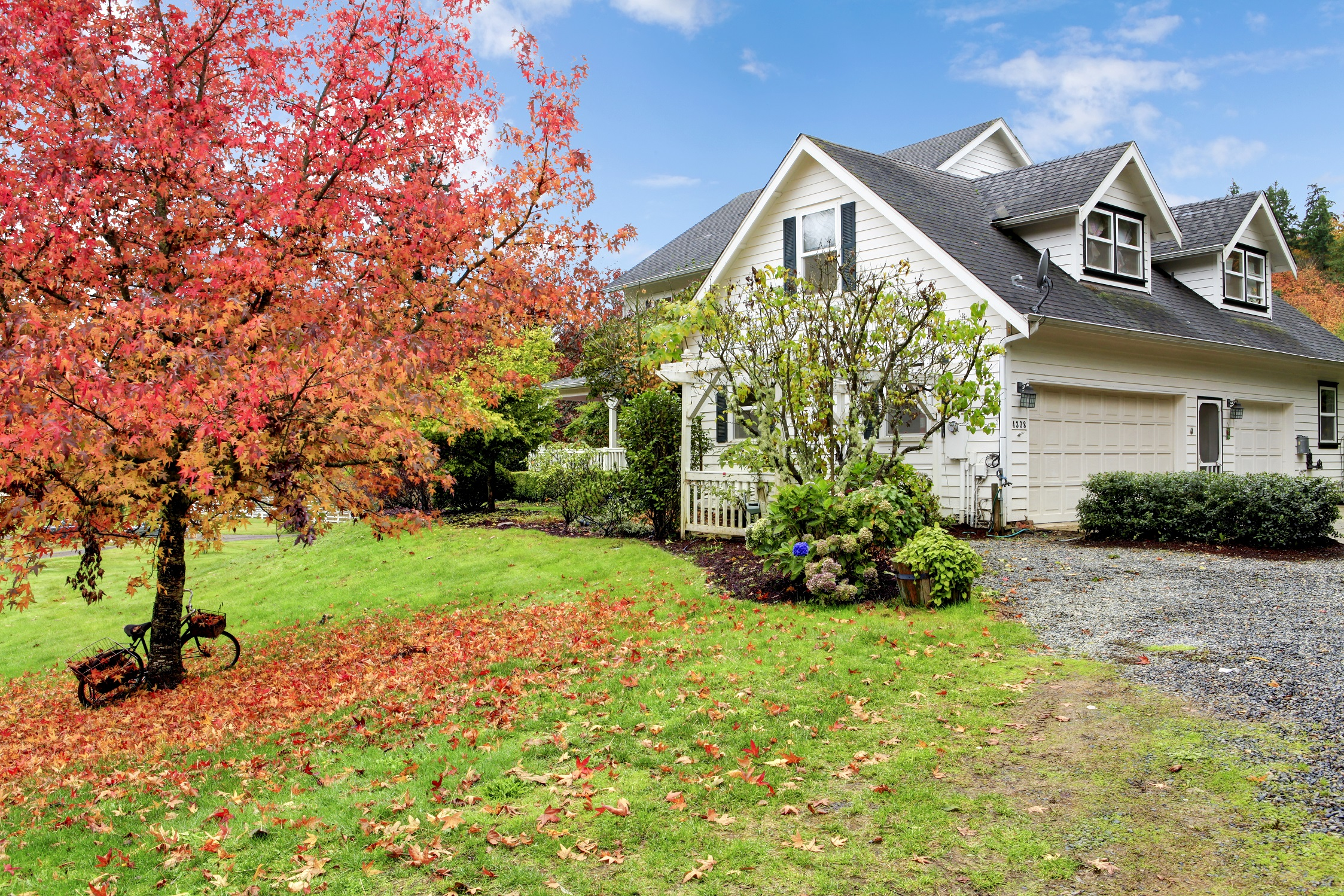 Regina Wittosch Associate Broker With Better Homes And