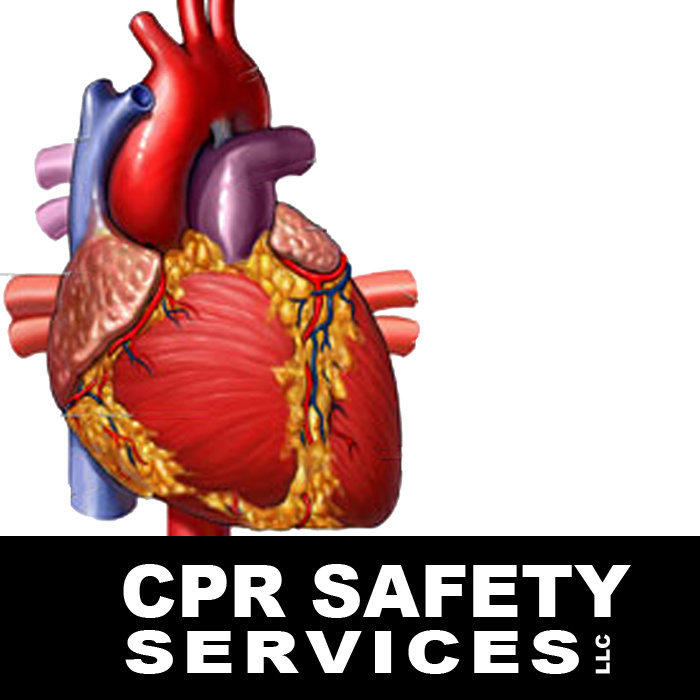 Cpr Safety Services, LLC
