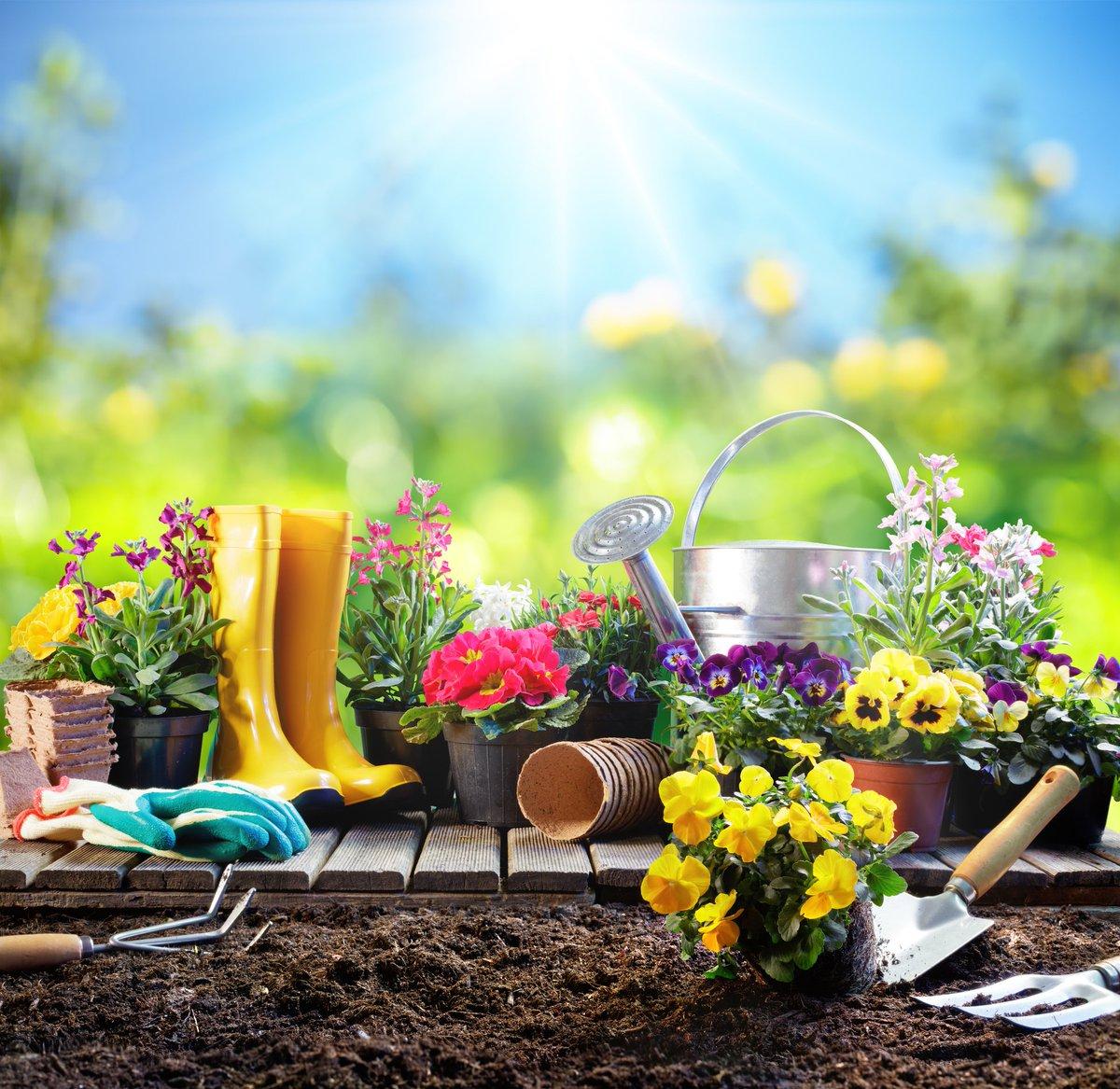 AEM - Parquización y Jardinería