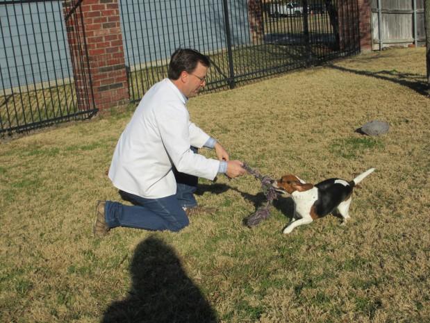 South Meadow Animal Fort Worth Texas Tx Localdatabase Com