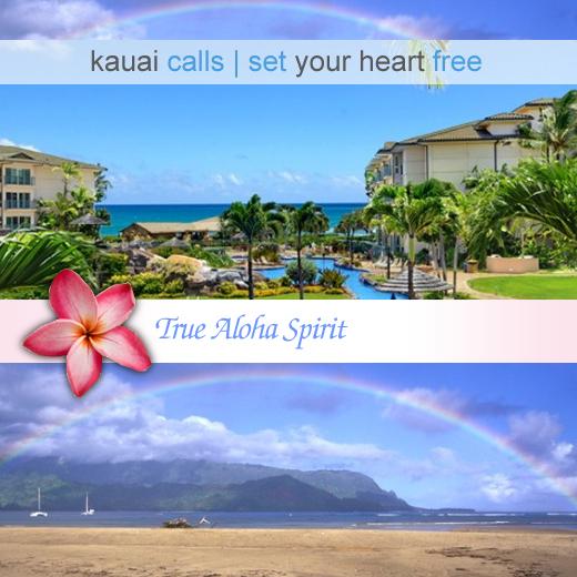 Business directory for kapaa hi for Kauai life real estate