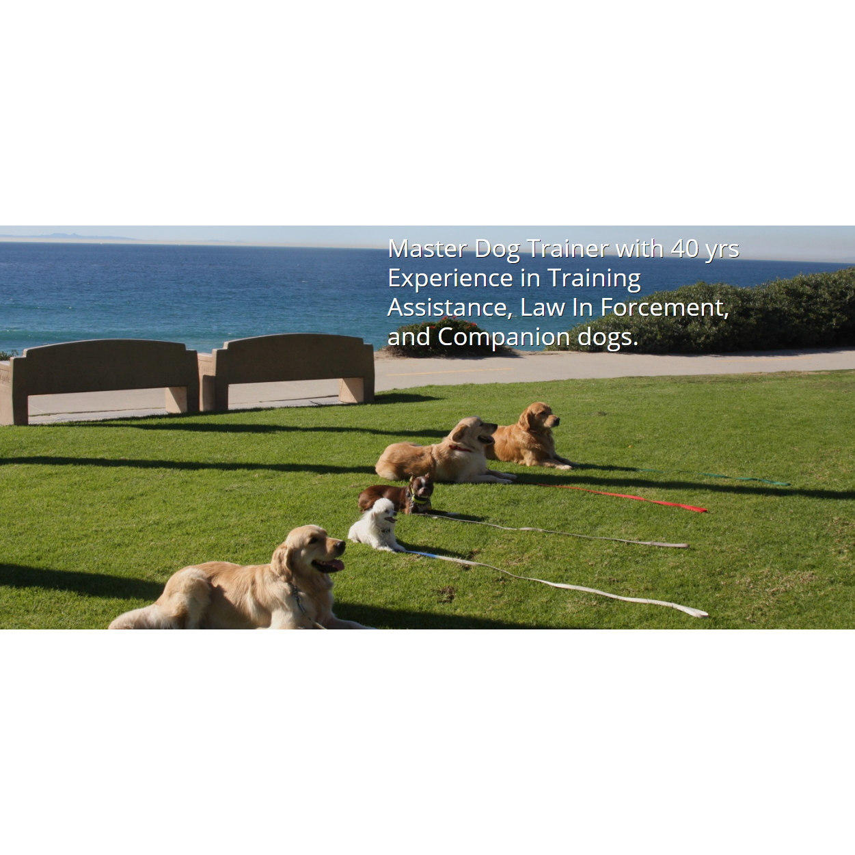 SW Canine Rehabilitation, Inc.