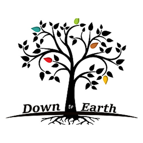 Down To Earth Cuisine LLC
