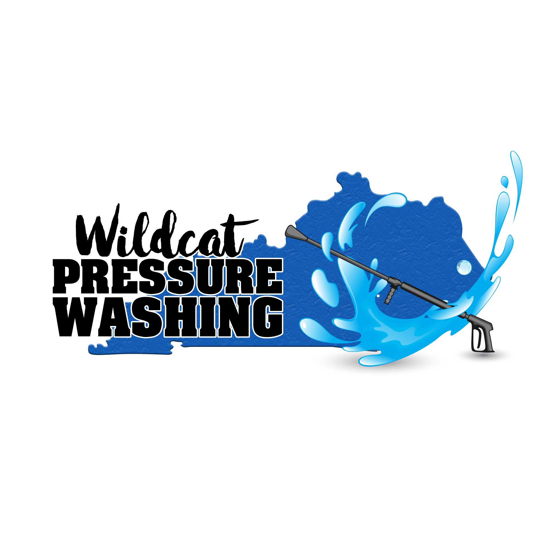 Wildcat Pressure Washing