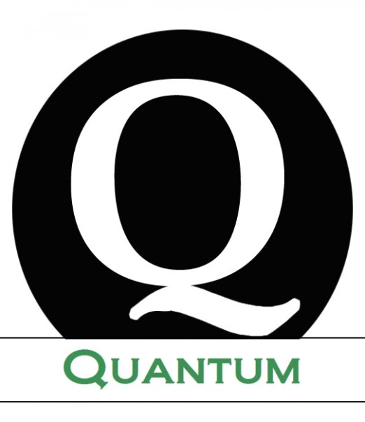 Quantum Professional Search