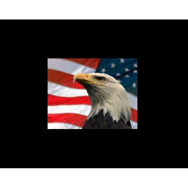 Eagle Security & Patrol Service LLC