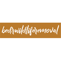 BEDR Wildlife Removal