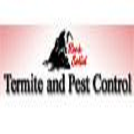 Rock Solid Termite & Pest Control