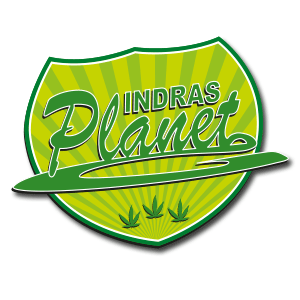 Indra's Planet GmbH