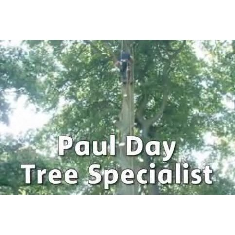 Paul Day Tree Specialist - Sheffield, South Yorkshire S25 4BH - 01909 519675 | ShowMeLocal.com
