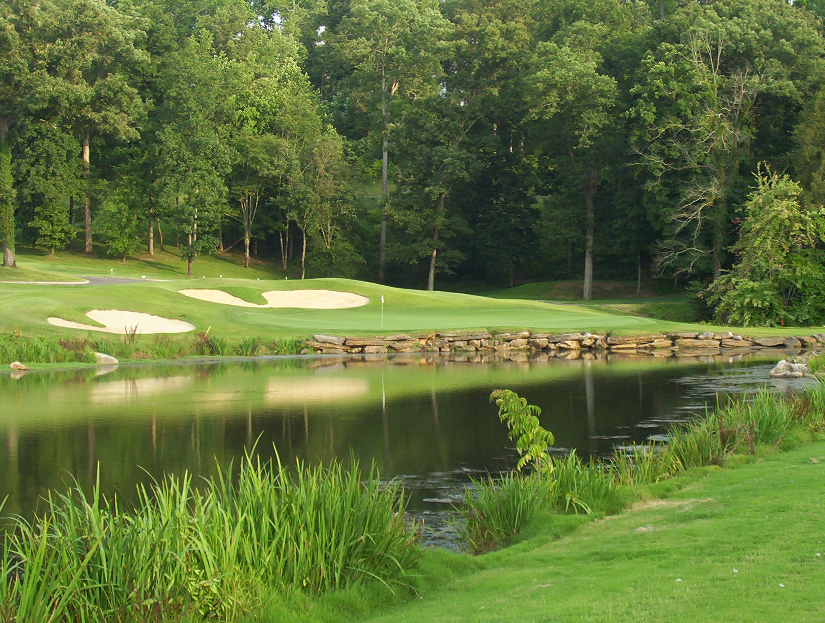 My Golf Vacation image 3