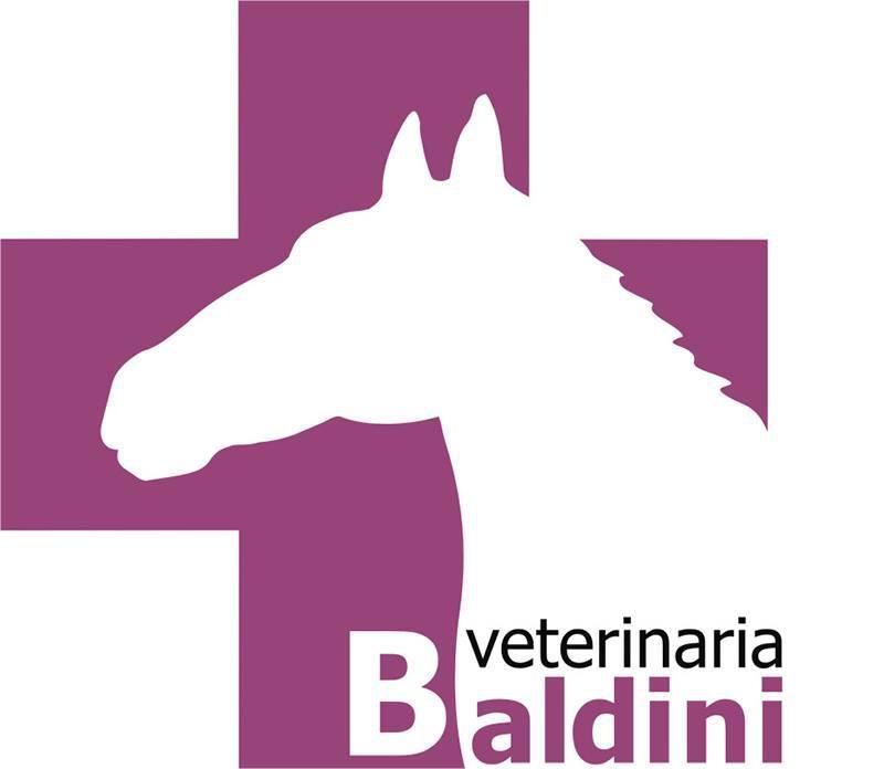 DISTRIBUIDORA EQUINA BALDINI