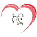 Animal Hospital in CA Huntington Beach 92647 Friendly Animal Hospital 6832 Edinger Ave  (714)845-5722