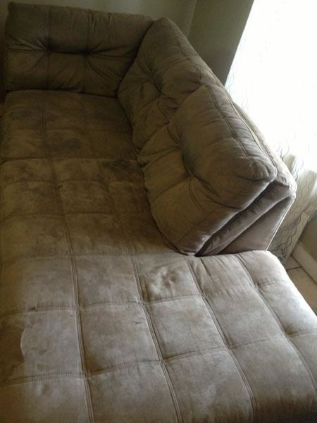 Ucm Upholstery Cleaning Rockville Maryland Md