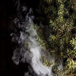 Alexandria Vape, Tobacco & Cigar