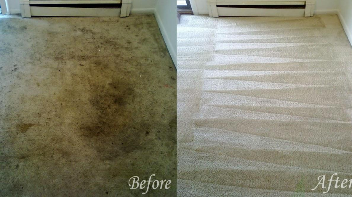 Clean Touch Carpet Services Cleaning Service Killeen Tx 76541