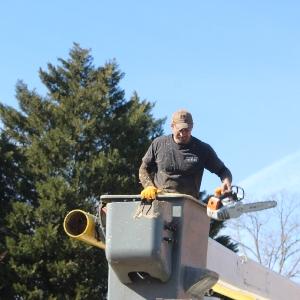 Parrigin Brothers Tree Service