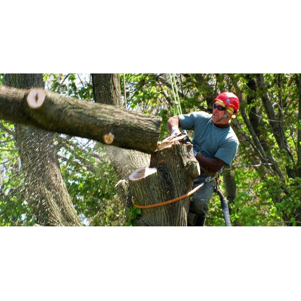 North Country Tree and Garden Services LLC - Elk River, NM 55330 - (763)233-2007 | ShowMeLocal.com