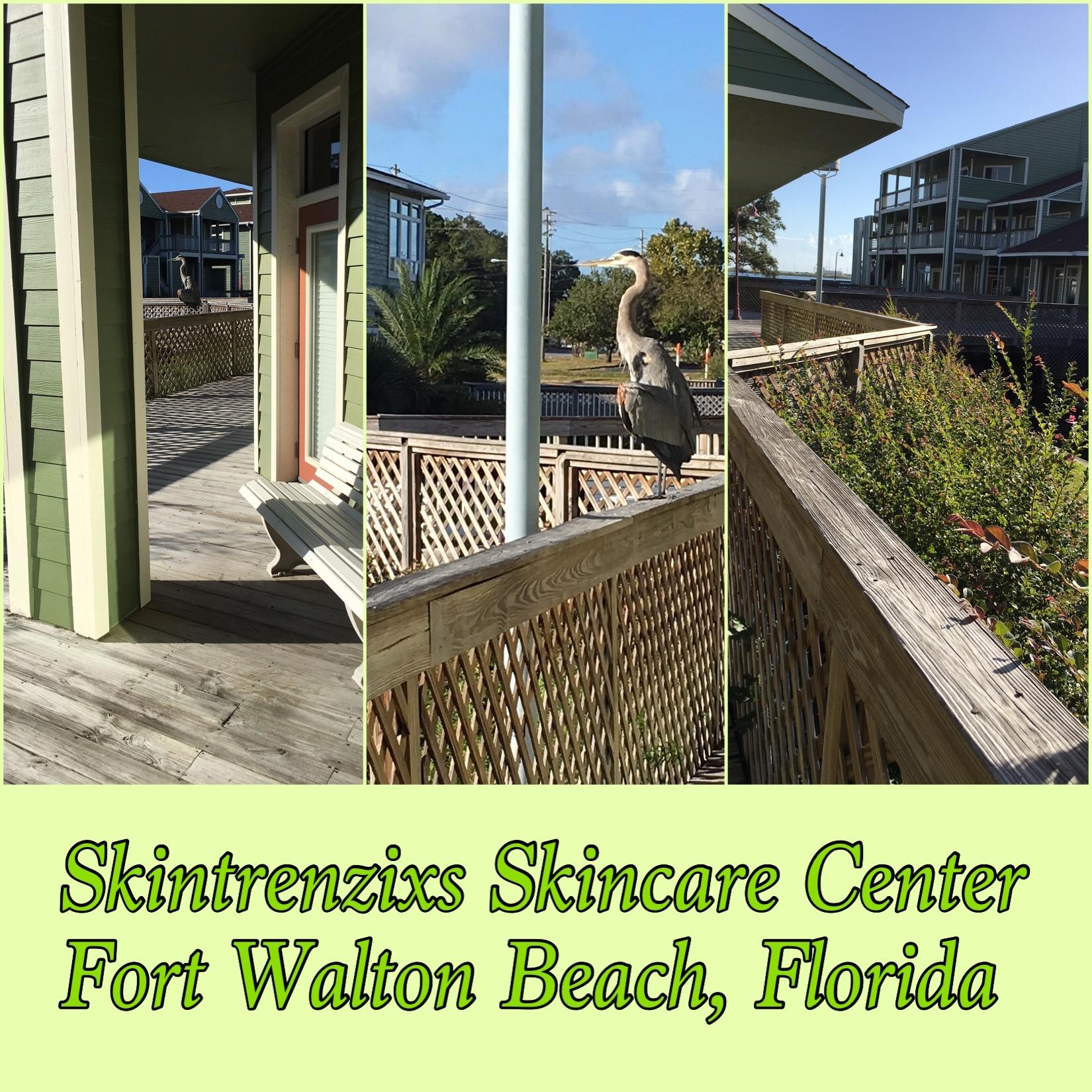Skintrenzixs Skincare Center Coupons Near Me In Fort