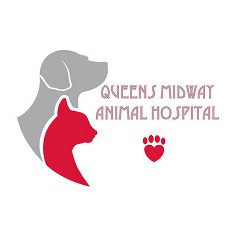 Queens Midway Animal Hospital in Flushing, NY, photo #1