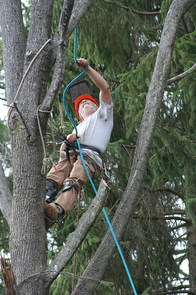 Brown Hound Tree Service in Roanoke, VA 24014 ...