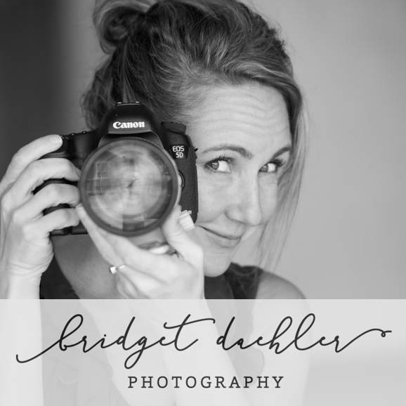 Bridget Daehler Photography - Austin, TX - Photographers & Painters