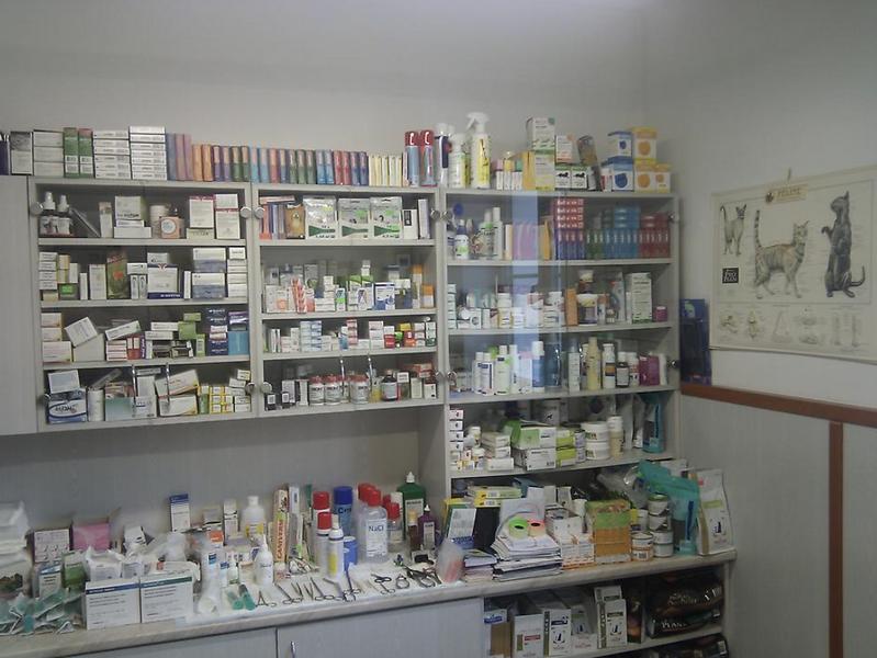 Veterinární ordinace - MVDr. Luděk Veselý