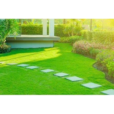 SAC Landscaping - Oakland, CA 94605 - (510)712-9682 | ShowMeLocal.com