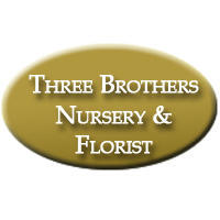 Three Brothers Nursery & Florist