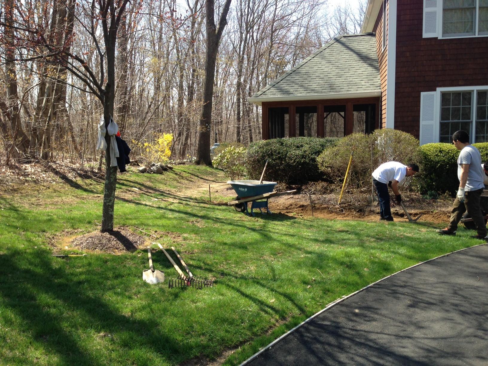 Riccio Landscaping & Tree Service image 5