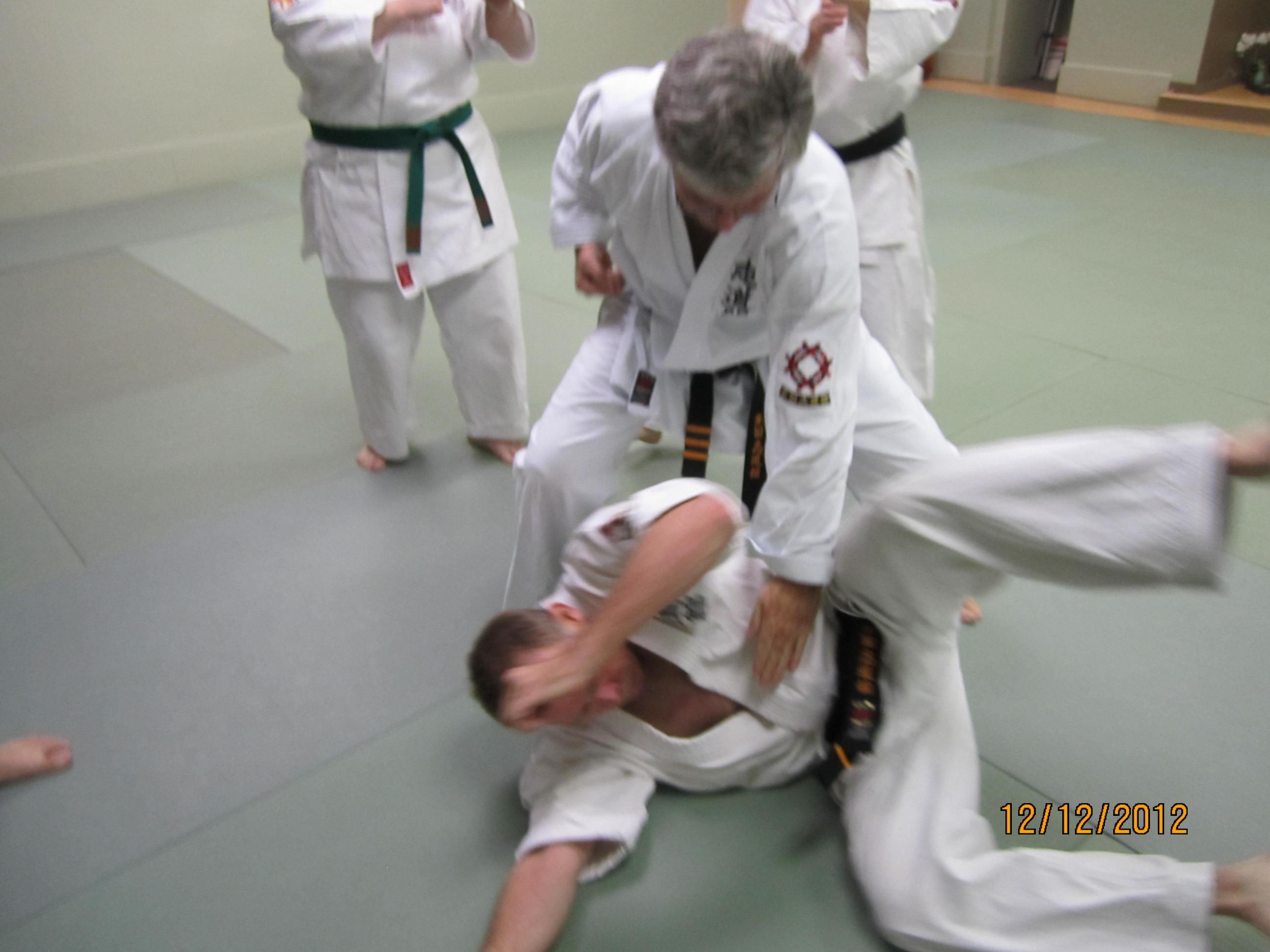 okinawan karate - Clawson, MI