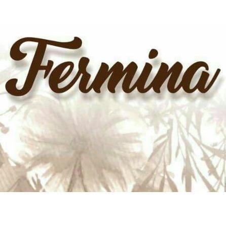 FERMINA INDUMENTARIA Y ACCESORIOS