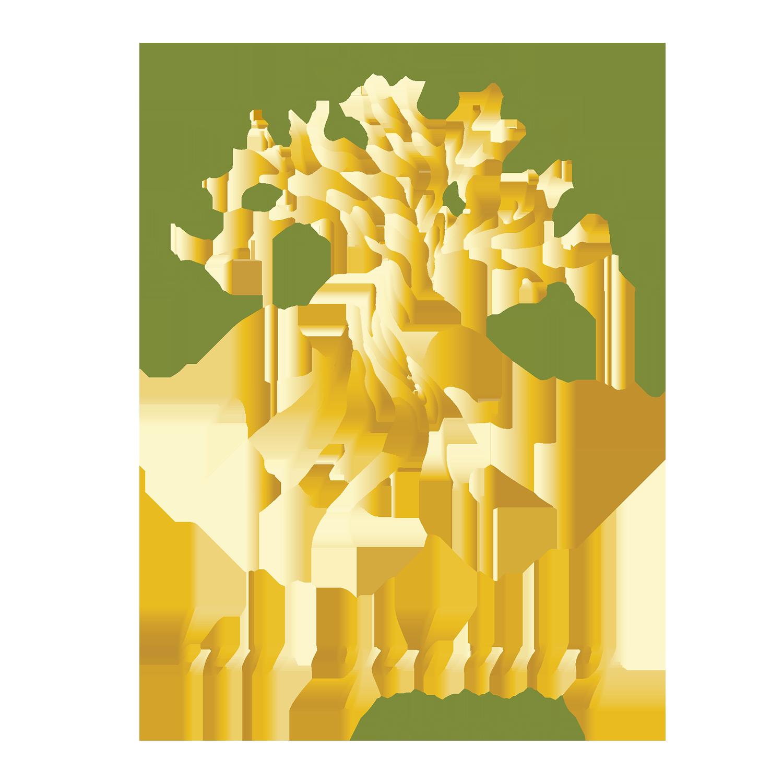 Ken Gehring Photography