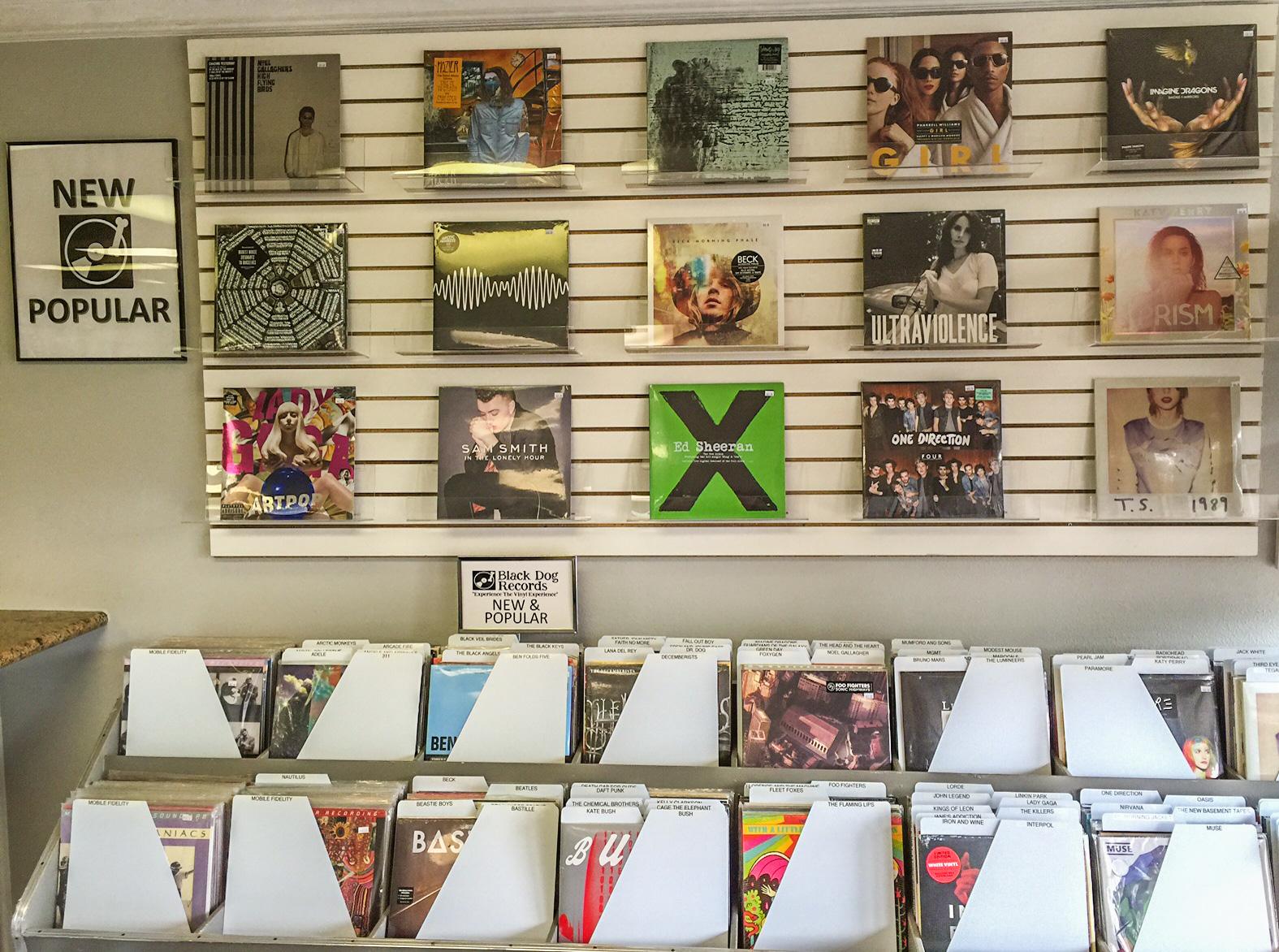 Black Dog Records Bellaire Tx