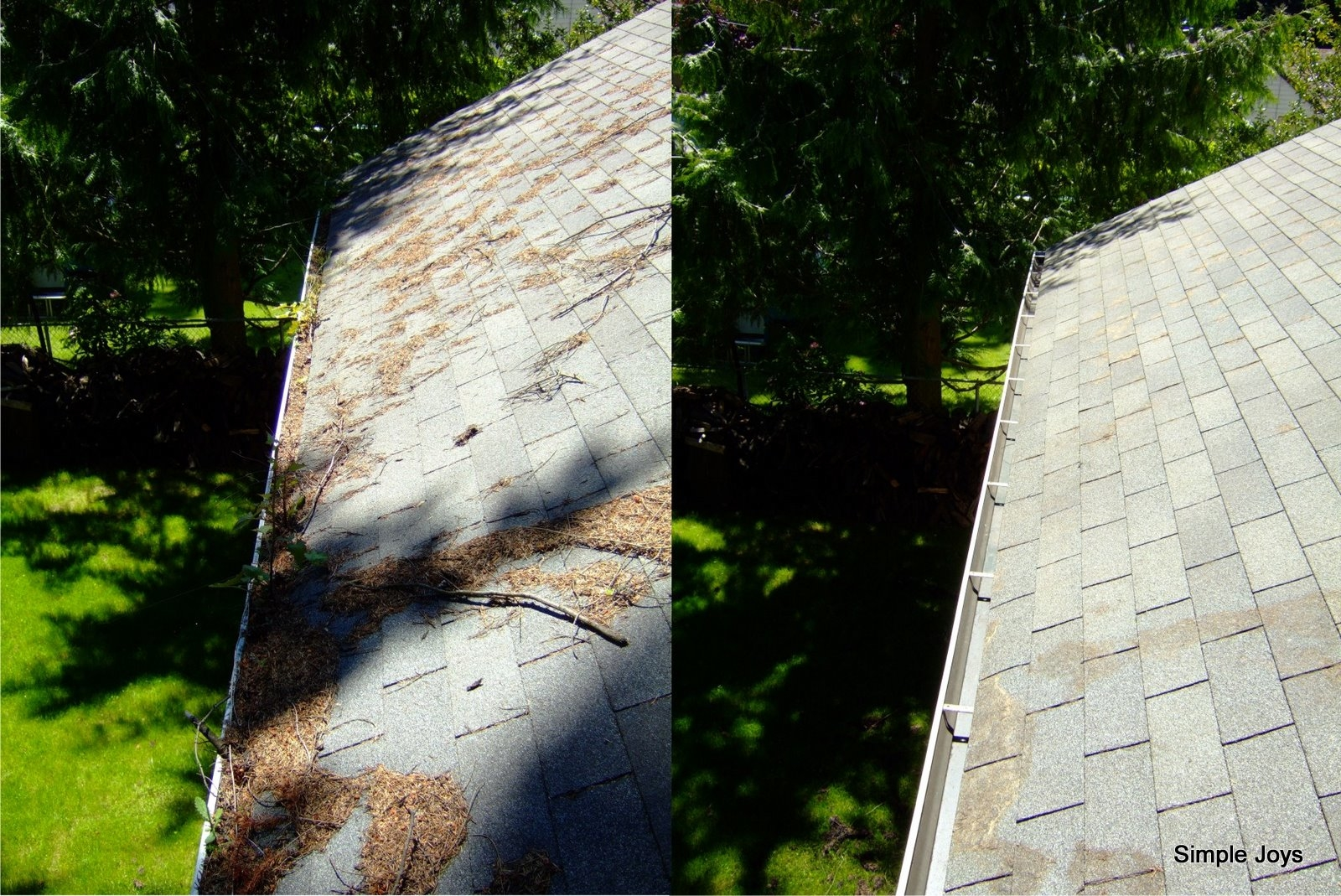 Simple Joys, Roof, Gutter, Window, Chimney, Dryer Vent Cleaning - Seattle, WA