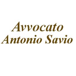 Savio Avv. Antonio