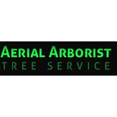 Aerial Arborist Tree Service
