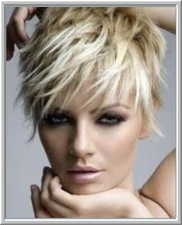 corporate hair style salon dejan in florida 34655 727 491 7751 2932