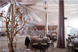 Drumbo Tent Co Ltd Drumbo (519)463-5341