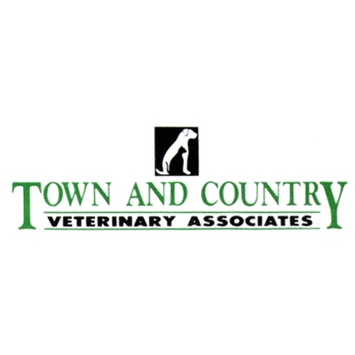 Town & Country Veterinary Associates - Vernon, CT - Veterinarians