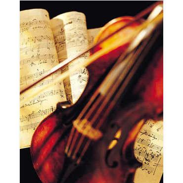 Kate Cullen Violin Tuition