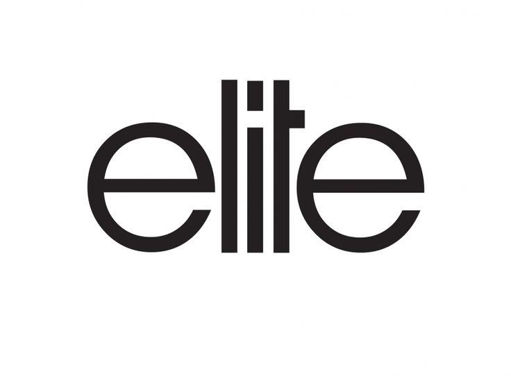 ELITE CONSULTING LLC