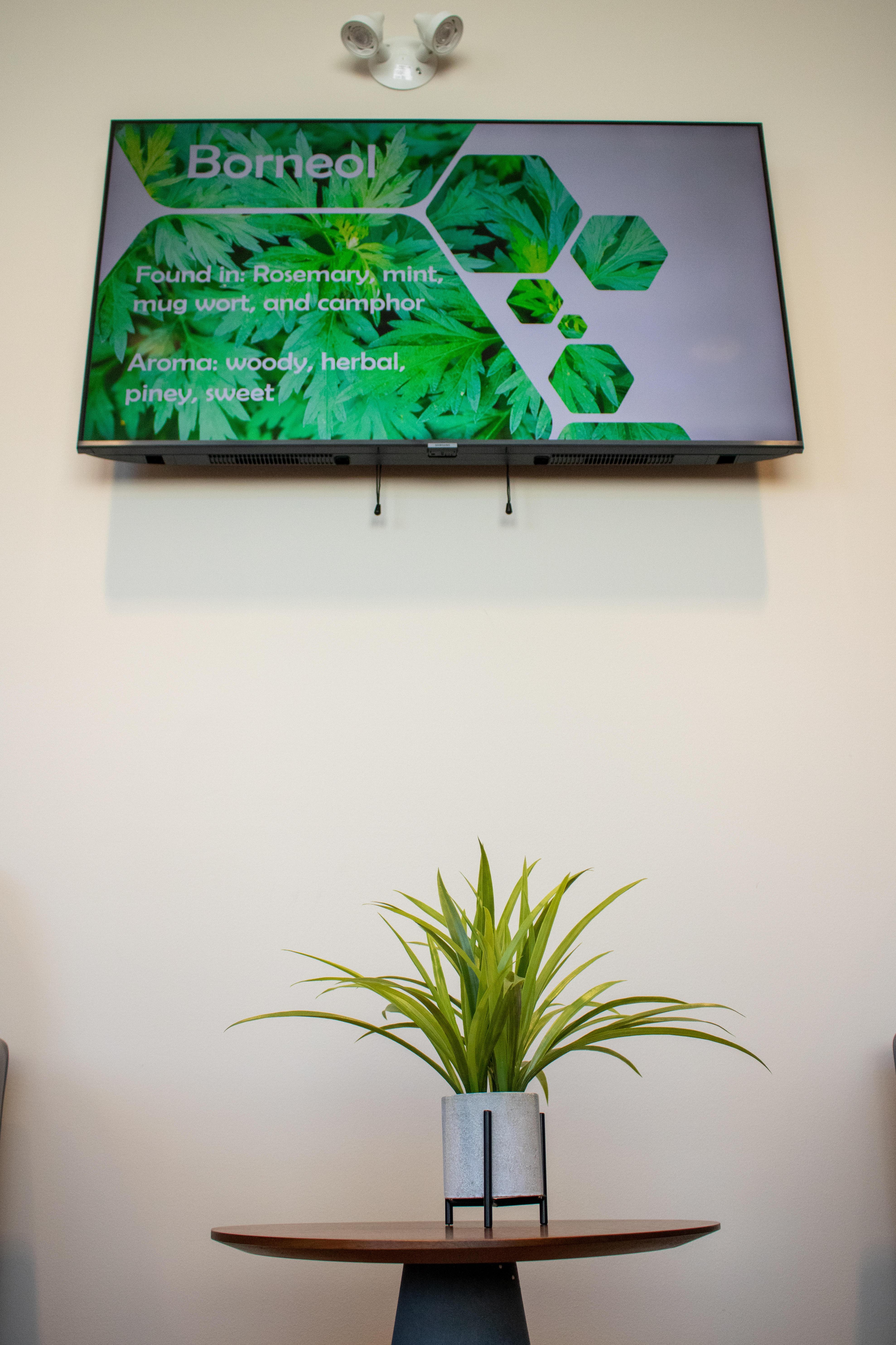 Vytal Options Medical Marijuana Dispensary Lansdale
