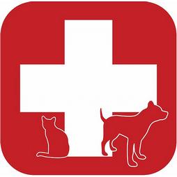 VET ANIMALS HELP s.r.o. - Veterinární klinika Karviná - Ráj