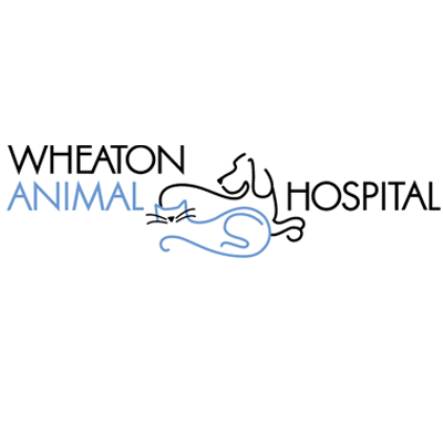 Wheaton Animal Hospital