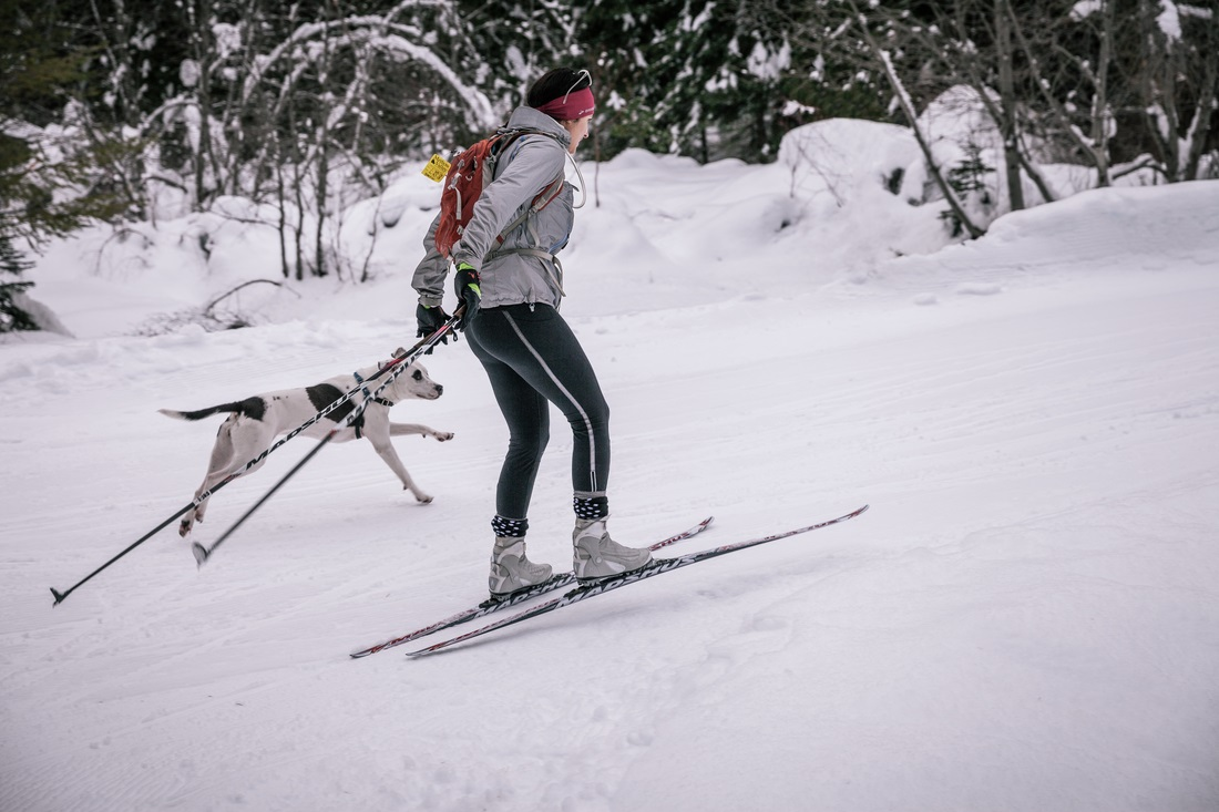 Women's Cross Country Skate Ski Waxing Workshop