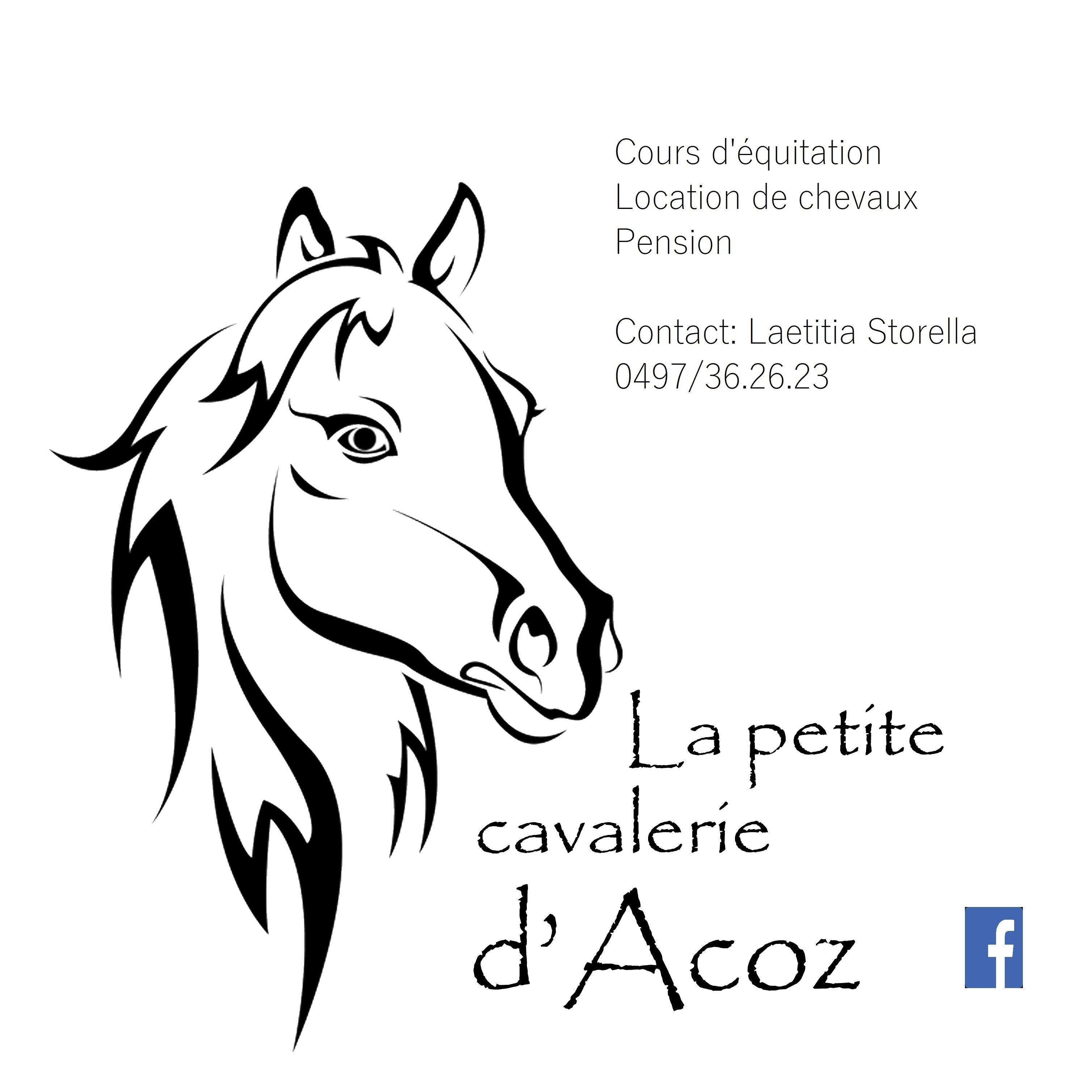 La petite cavalerie d'Acoz