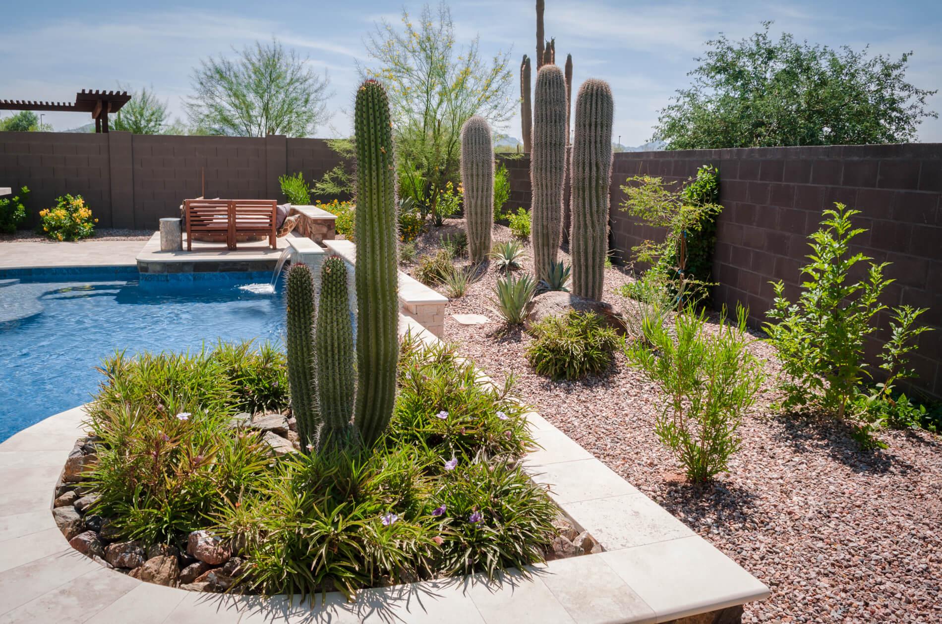 Straight Line Landscape Phoenix Arizona Az