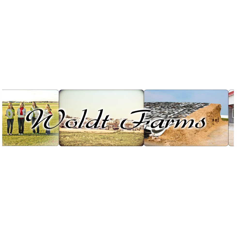 Woldt Farms Llc