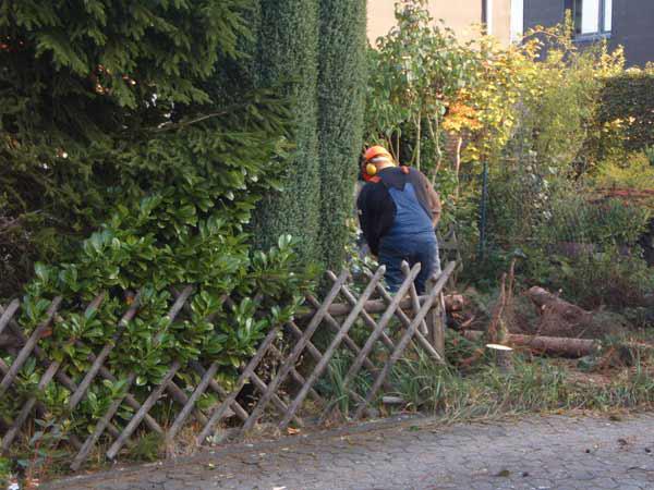 HA-WO Garten- und Landschaftsbau GmbH